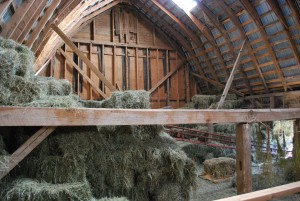 Hay in the hayloft