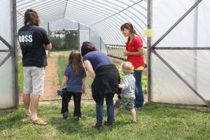 Open Farm Day 2013